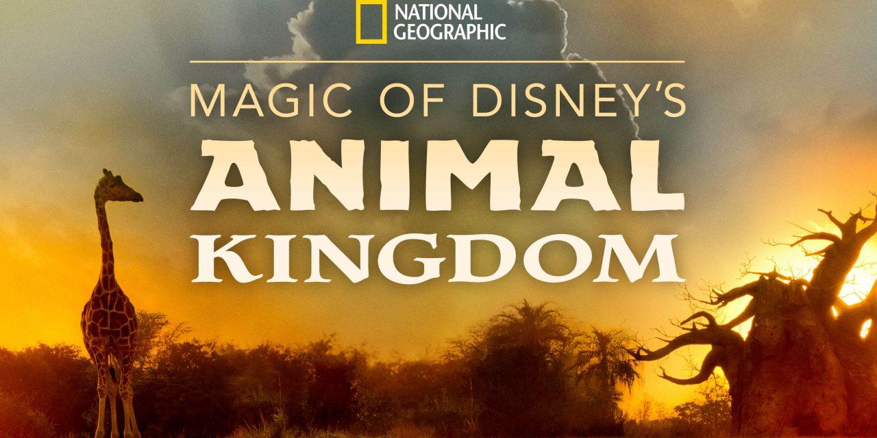 Josh Gad to narrate MAGIC OF DISNEY'S ANIMAL KINGDOM series coming September 25 to #DisneyPlus