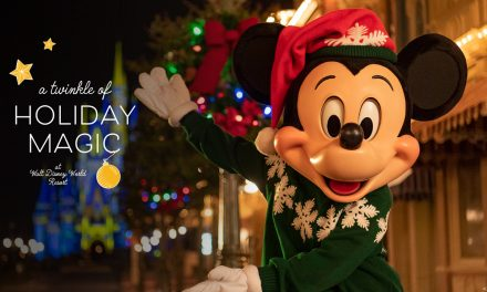What you will (and won't) find for the Walt Disney World 2020 'twinkle' of the holidays starting Nov. 6, 2020