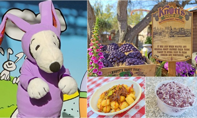 PICTORIAL: Colorful KNOTT'S TASTE OF BOYSENBERRY FESTIVAL is a berry good time with food and fun in full bloom