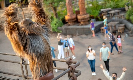 WHAT TO EXPECT: A recap of everything you need to know about returning to the Disneyland Resort